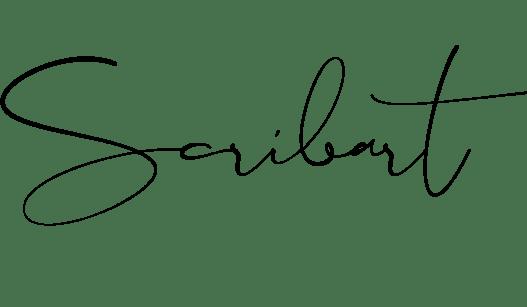 Scribart
